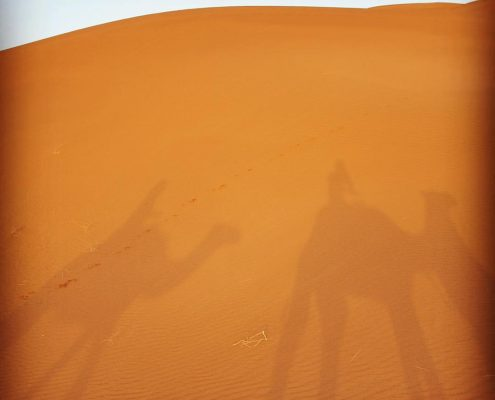 riding camels in the Sahara Desert, Morocco