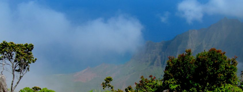 Kauai overlook fog clouds ocean Hawaii